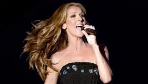 Celine-Dion-scandale-financier
