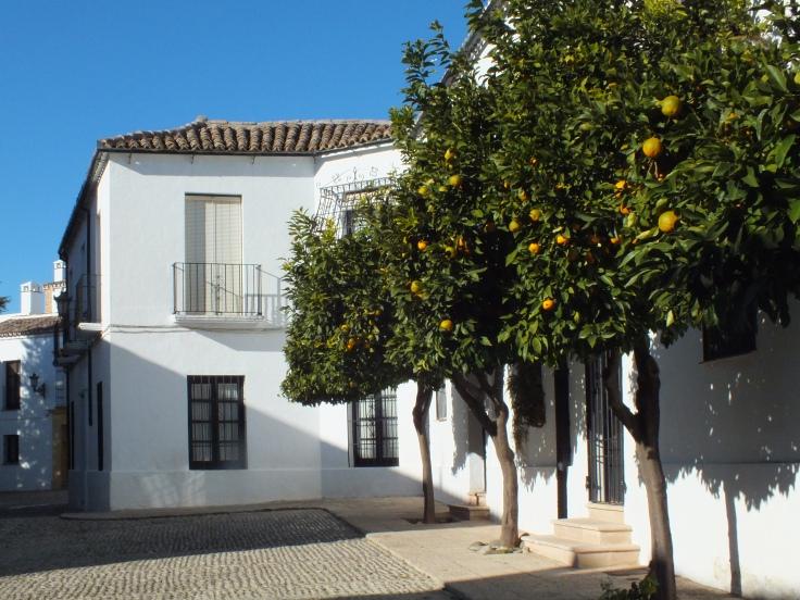 Les orangers et l'Andalousie...toute une histoire