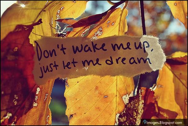 Crédit Photo: http://9images.blogspot.fr/
